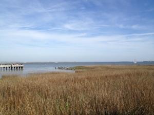 Charleston, SC. Photo by author.